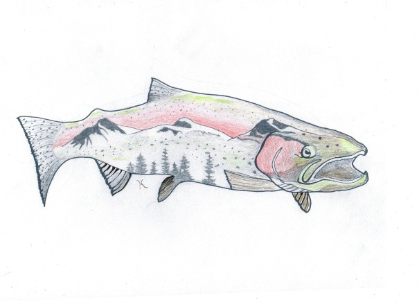 steelhead with color