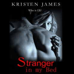 Stranger in my Bed audiobook